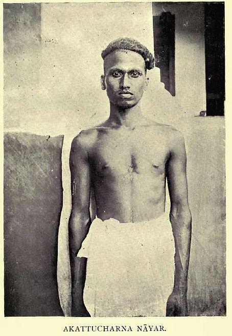 """Sr. N. Subramani Aiyar escribe en una nota sobre las Nāyars de Travancore, """"cree que Nayar se deriva de Naga (serpientes), como los arios así denominan los pobladores anteriores de Malabar a causa de la adoración especial que pagaban a las serpientes. Los Nāyars Travancore son popularmente conocidos como Malayala sudras un término que los contrasta agudamente con la Pandi o sudras extranjero, de los cuales un gran número emigró en Travancore en los últimos tiempos """"."""