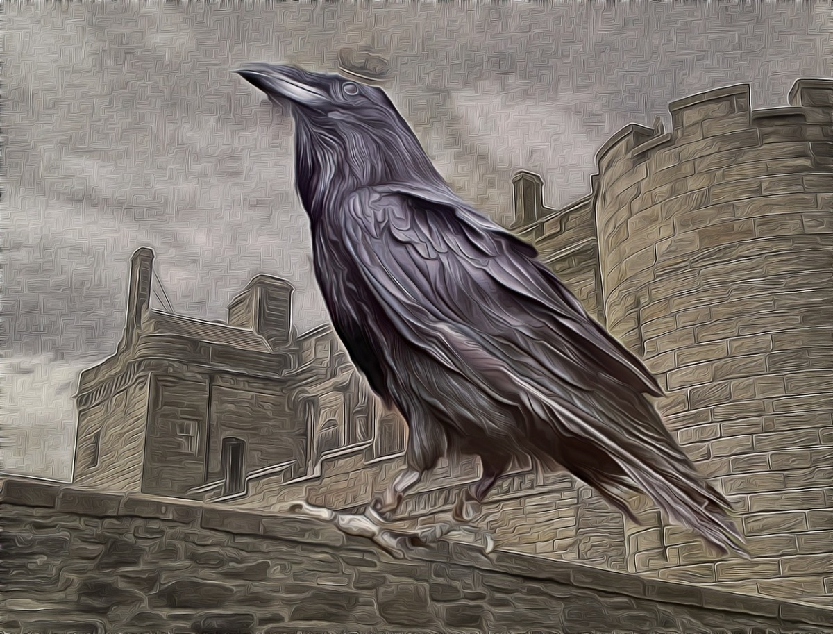 Are crows smarter than americans the answer may change our are crows smarter than americans the answer may change our understanding of why halloween is celebrated before election day warlock asylum international biocorpaavc